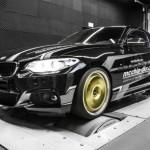 Xe sang BMW 220i Coupe độ khủng bởi Mcchip-DKR